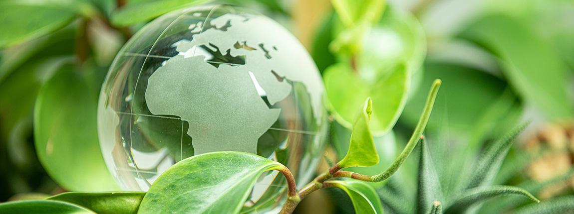 Qu'est-ce que la durabilité et l'éco-responsabilité ?