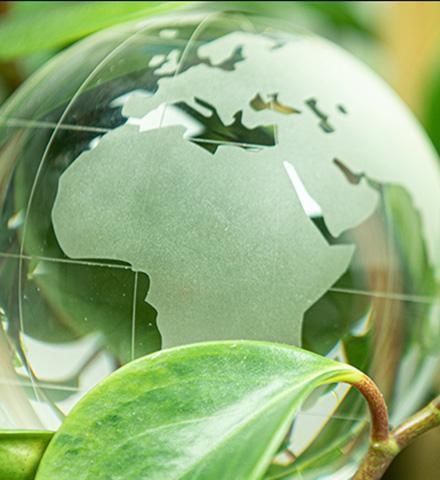 Les produits durables et éco-responsables